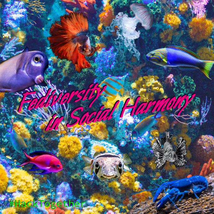 fish-hack-together